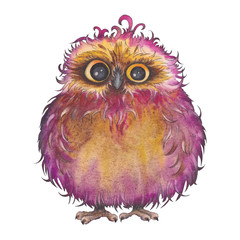 Cute little owl with curly feather. Watercolor illustration on white background. Isolated element for design.