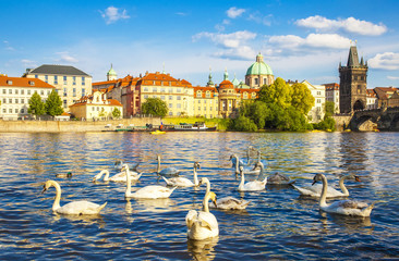 Wall Mural - Prague town and Vltava river