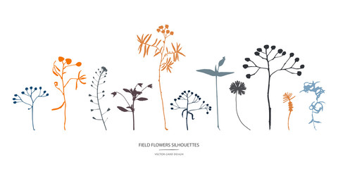 Vector silhouettes collection. Set of field flowers, herbs.