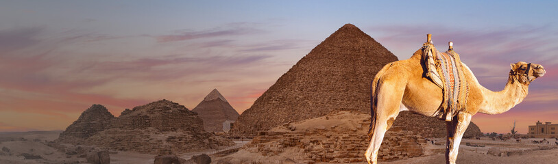 The giza plateau in the sahara desert. great pyramids in Cairo Wall mural
