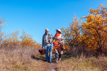 Senior couple walking in autumn forest. Middle-aged man and woman hugging and chilling outdoors