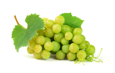 Bunch of  grapes  with leaves, isolated on white background with shadow.Autumn time. Harvest. Diet.