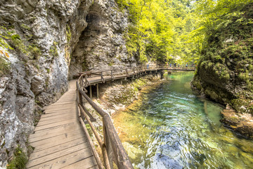 Soteska vintgar gorge boardwalk on sunny day