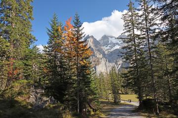 Wanderweg zum Oeschinensee bei Kandersteg, Alpen, Schweiz