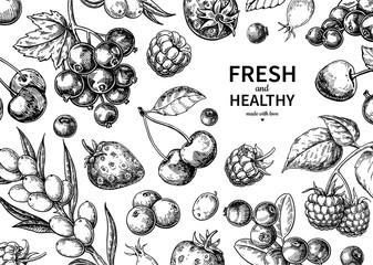 Wild berry drawing. Hand drawn vintage vector frame. Summer fruit set