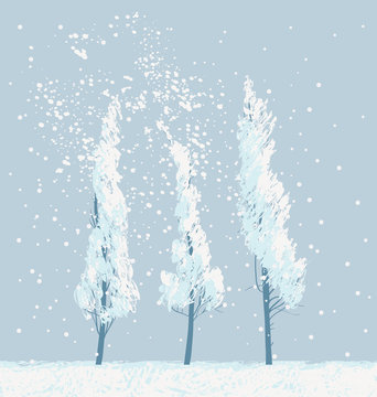 Snowy winter landscape or banner in white and gray colors with three slender snow-covered young trees. Vector illustration