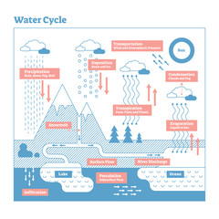 Water Cycle vector illustration diagram. Geo science ecosystem scheme.
