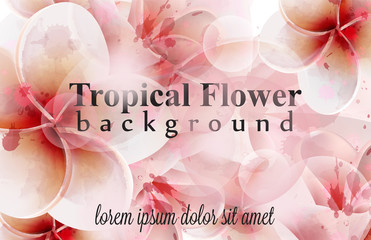 Tropical flowers watercolor background. Delicate decor Vector detailed illustrations