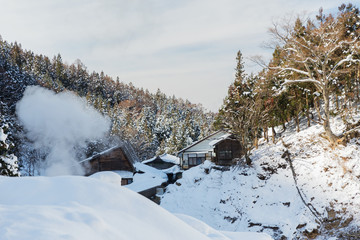 nature and landscape concept - country houses and forest hills in winter, japan
