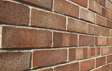 Red brick wall closeup in perspective