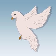 bird in flight against the sky, vector