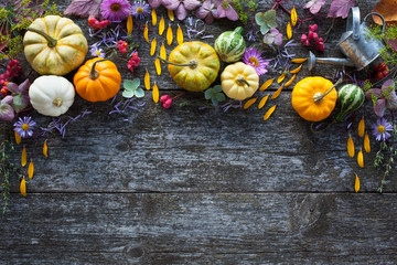 Wooden background with colored small pumpkins, flowers and other decor.