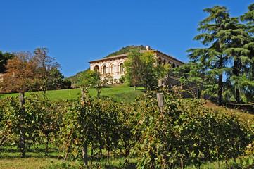Villa dei Vescovi, Luvigliano - Padova