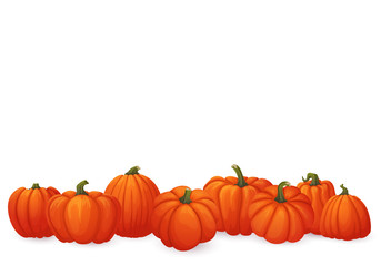 Banner with ripe orange pumpkins with green stems isolated on white background.