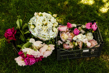 Lovely pink, white, red and pale pink peonies outdoors