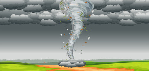 A tornado in nature