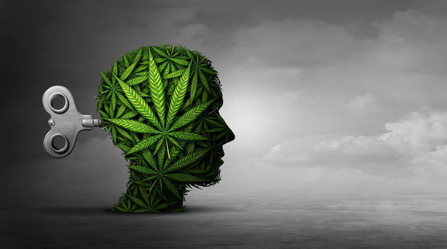 Cannabis And Mental Function