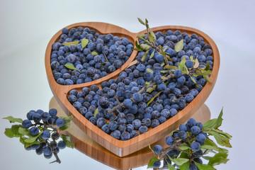 Damson Berries (Prunus domestica subsp. insititia, or sometimes Prunus insititia)