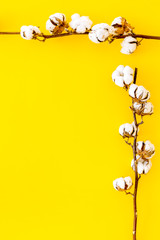 Branch of cotton on yellow background top view copy space