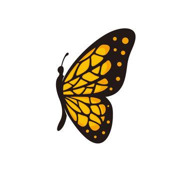 Butterfly vector logo