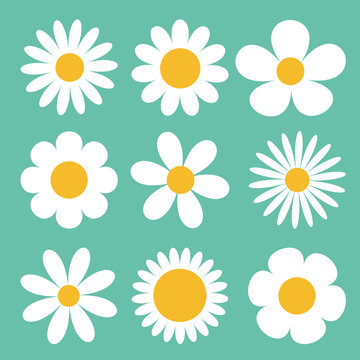Camomile set. White daisy chamomile icon. Cute round flower plant collection. Love card symbol. Growing concept. Flat design. Green background. Isolated.