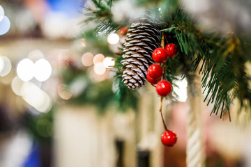 Image of New Year branch of fir-tree with cones, red berries