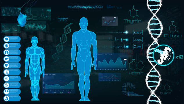 Concept of sports science, futuristic interface of heart analysis; digital blueprint of human. Analysis of the state of the heart, DNA a full examination. Futuristic interface HUD, Vector illustration