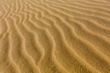 Close-up photography of endless sand ripples made from the wind