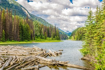 Wall Mural - View at the nature near Duffey Lake in British Columbia - Canada