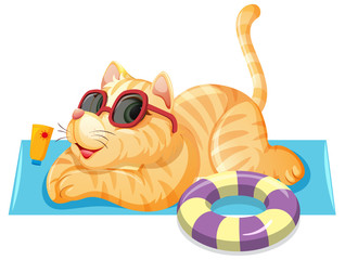 A cat on summer theme