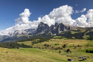 Auf der Seiser Alm in Südtirol, Italien
