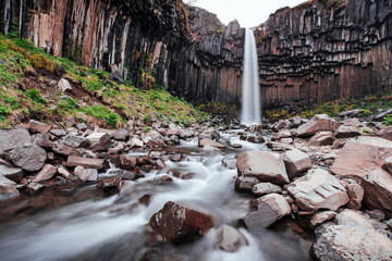 Great view of Svartifoss waterfall. Dramatic and picturesque scene. Popular tourist attraction. Iceland
