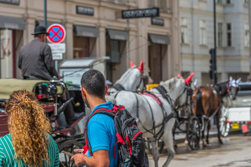 A coachman in a cart in the center of the city, Vienna, Austria.