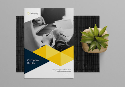 Brochure Layout with Blue and Yellow Accents
