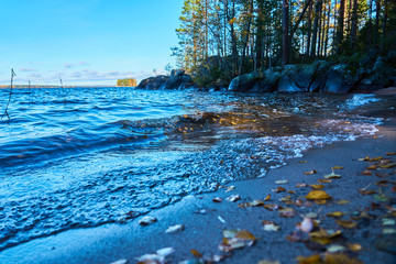 Colorful autumn leaves on a sandy coast of a lake. Waves of water, trees and horizon on a blurred background.
