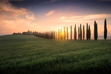 Tuscany Sunrise Val D'Orcia