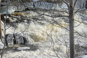 Bracebridge Falls in Winter