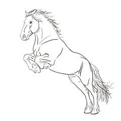 Fototapeta A sketch of a jumping horse.