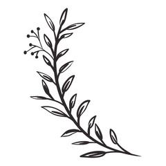 beautiful leaf plant isolated icon