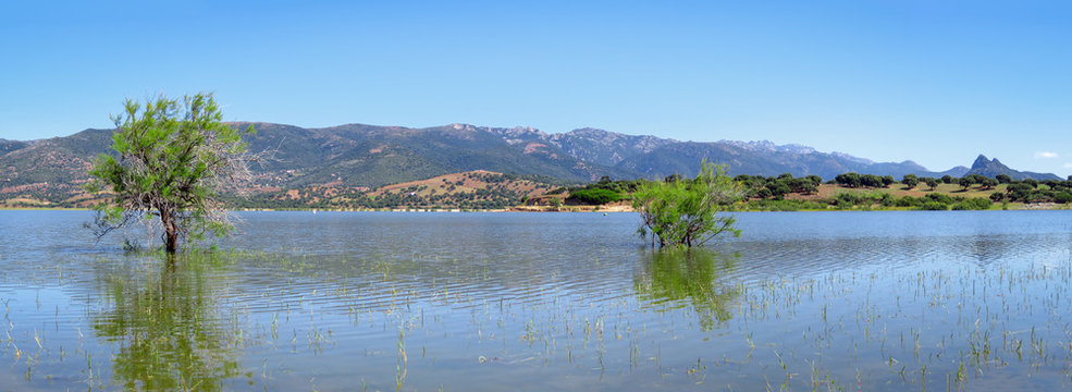 Panorama of Lago del Coghinas with the reflection of trees and mountains in the blue water of the lake, Sardinia, Italy