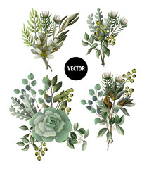 Set of greenery leaves and succulent bouquet in watercolor style. Eucalyptus, magnolia, fern and other  vector illustration.