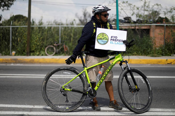"A member of civil organisation holds a sign reading ""I prefer the lake"" during an occupation of toll booths, allowing the free access to motorway in protest against the construction of the new Mexico City international airport in Texcoco"