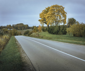 Road leading through a valley surrounded by colorful trees in Latvia. Autumn scenery over the countryside.