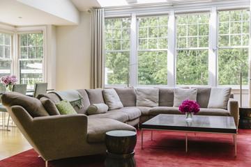 Modern  Living Room in Home