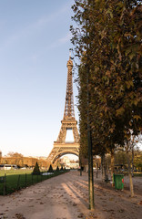 Park and Eiffel tower