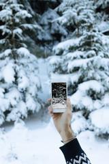 A Man Taking Photo of Frozen Pine Tree