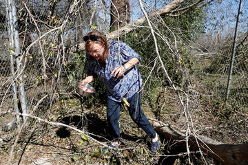 Broaddus walks through damage caused by Hurricane Michael at the Feline Center in Florida
