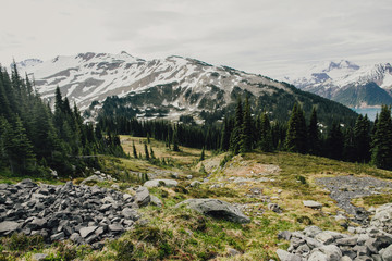 Alpine Landscape in British Columbia Canada