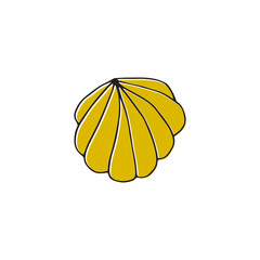 Vector hand drawn sea shell. Isolated individual object.