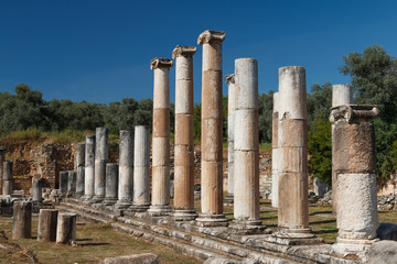 Ruins of the ancient town Nysa on the Maeander, Turkey